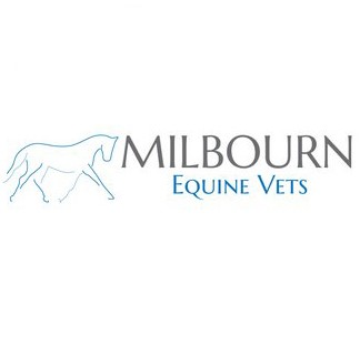Ambulatory Equine Veterinary Surgeon